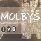Image of Molbys